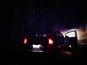 Tammy the Prius at the edge of darkness...
