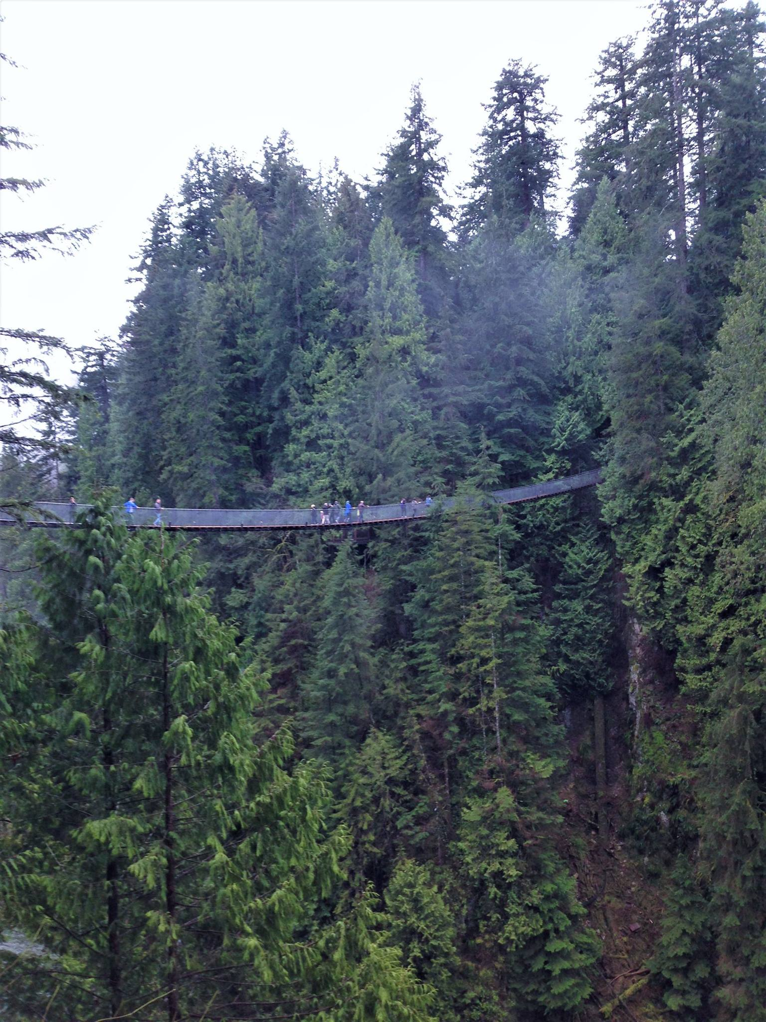 Capilano Bridge. It's only slightly (terrifyingly) high.